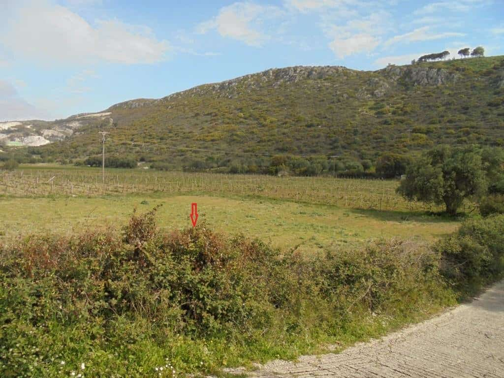 Plot for sale in Minies