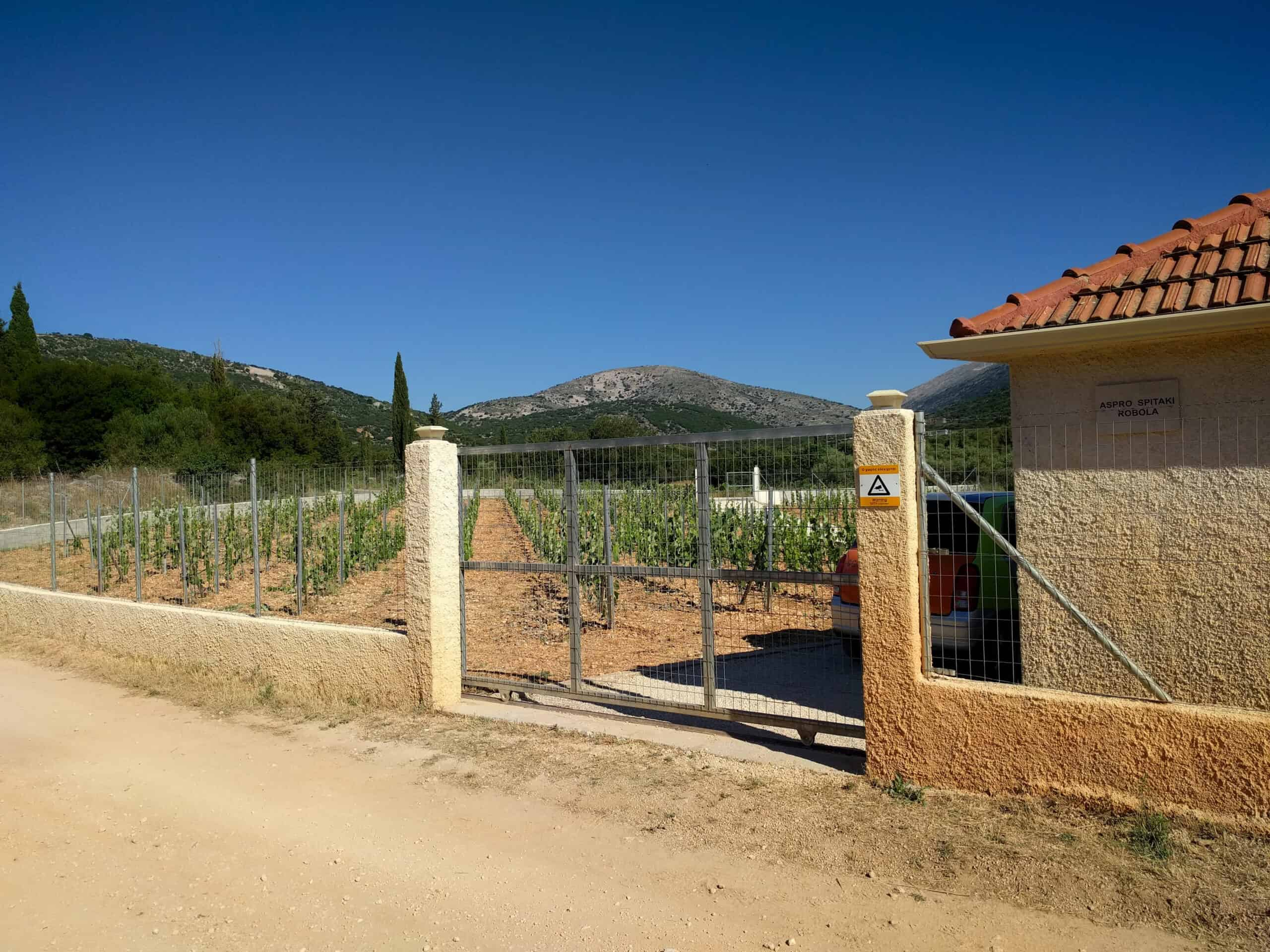 House in Fragkata area for sale