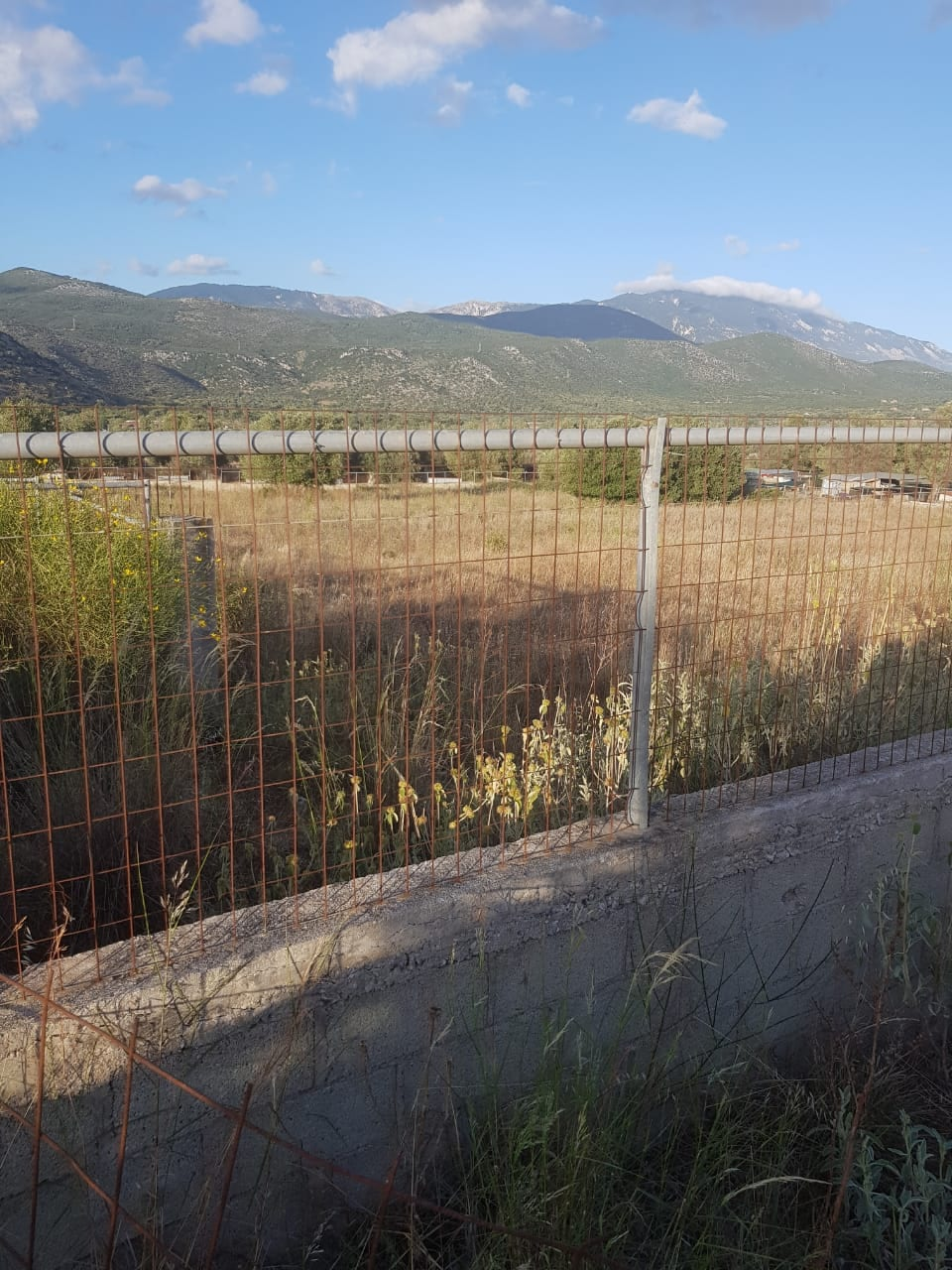 Agricultural land for sale in Krania